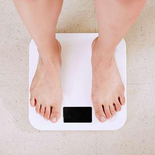 Учени направиха връзка между климатичните промени и затлъстяването