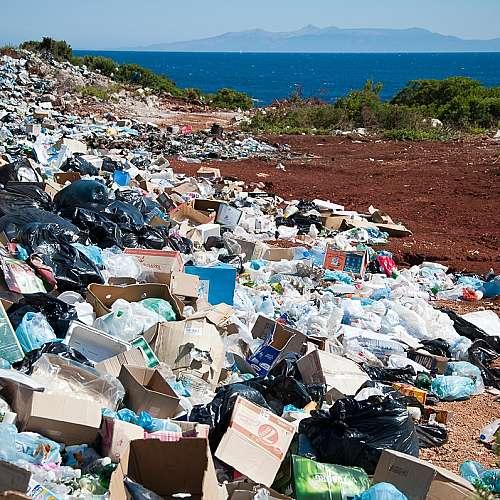 Български учени разработват проект за разграждането на отпадъци от целулоза