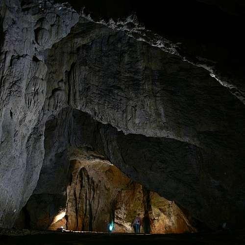 Зъб на 45 000 години открит в България говори за неизвестна миграция към Европа