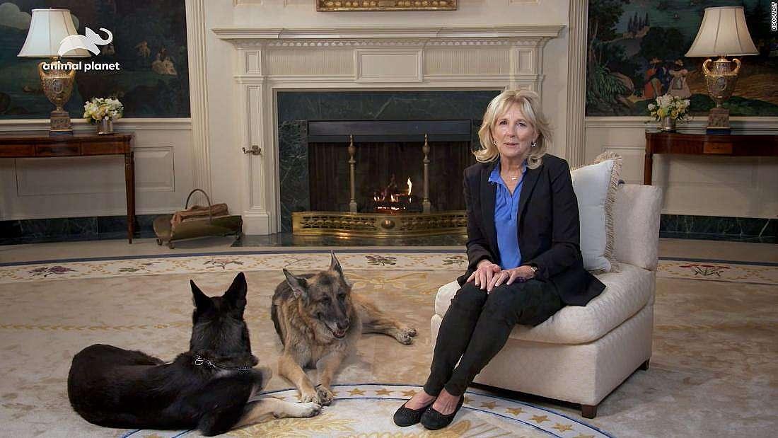 Кучетата на семейство Байдън, Мейджър и Шампион, са отново в Белия дом.