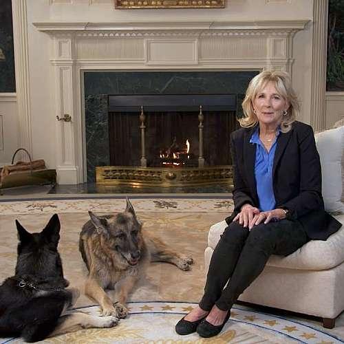 Немските овчарки на президента Байдън се завърнаха в Белия дом