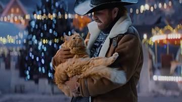 Чък Норис спасява котка на елха