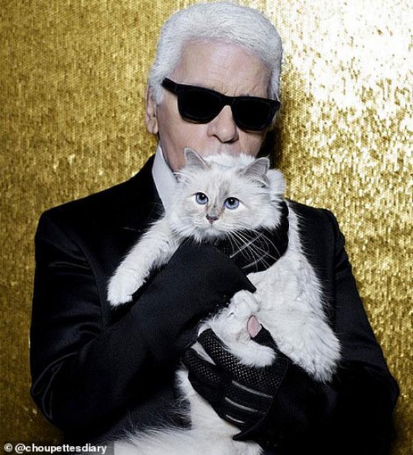 Karl Lagerfeld cat 01