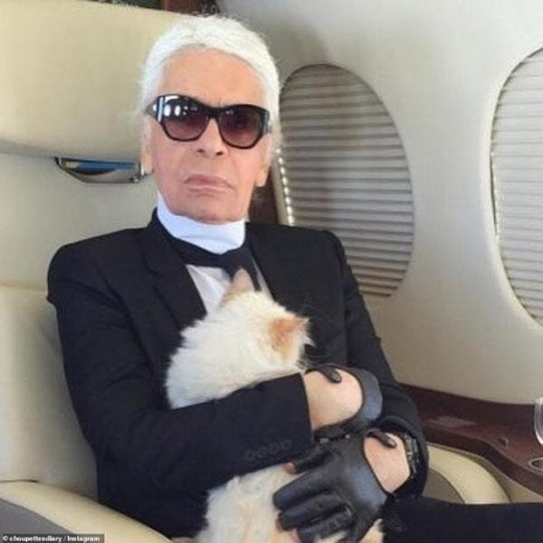 Karl Lagerfeld cat 02