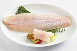 Pangasius Fish Fillet