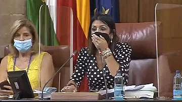 Плъх прекъсна заседание на парламента в Андалусия
