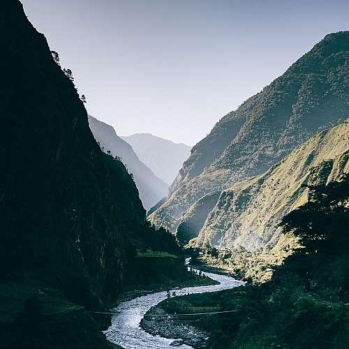 Необичайни растителни видове  се появиха в Непал заради глобалното затопляне