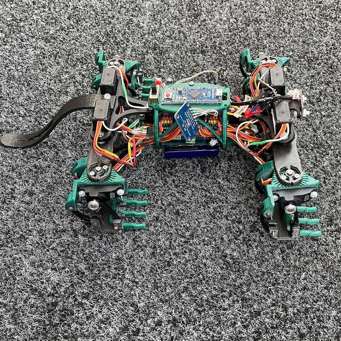 Роботизираният гущер X-4 e разработен от инженери на University of the Sunshine Coast