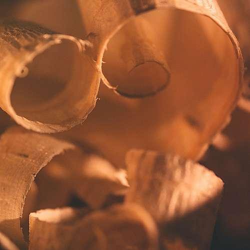Свръхздрава дървесина може да замени стоманата и керамиката