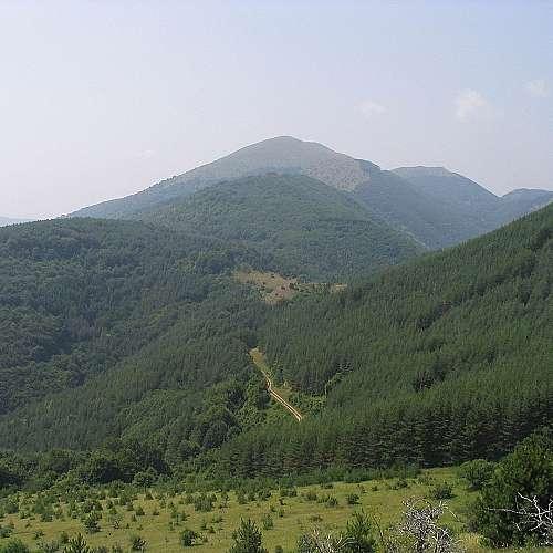 Единадесето международно изкачване на връх Руй
